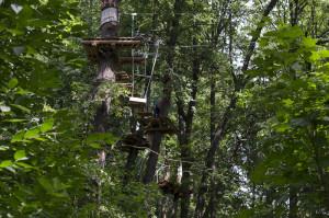 лазание по деревьям 2