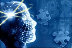 человеческий мозг2