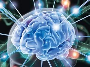 волны-мозга23
