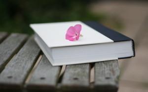 книги, которые вам стоит прочесть для развития своего психологического потенциала2