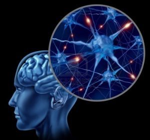 препараты для улучшения работы мозга1111111111